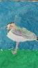 Ornitologiczny super uczeń_7