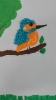 Ornitologiczny super uczeń_8